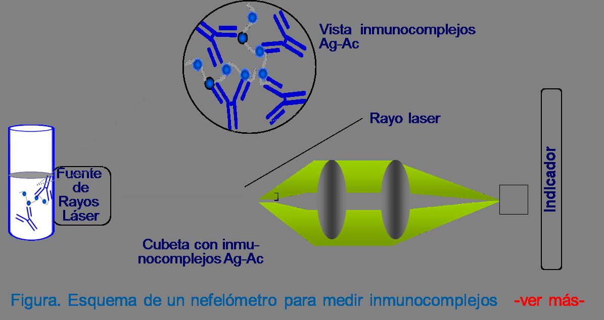 Esquema de un nefelómetro. Los complejos Ag-Ac formados son cuantificados por el grado de difracción. Se establece una relación entre la cantidad de luz que llega y la cantidad de complejos formados.